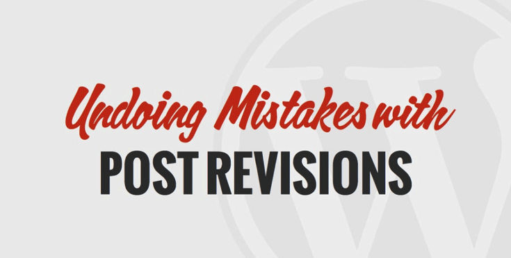 WP 101 Post Revisions Video