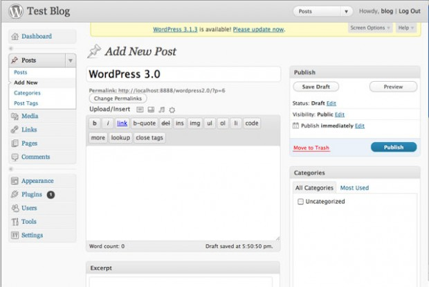 WordPress 3.0-Post