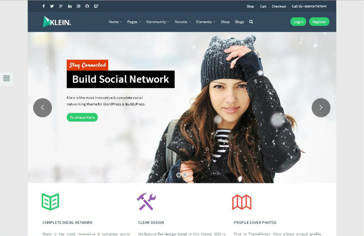 how-to-create-a-social-network-using-wordpress-klein-theme